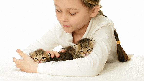 Girl Stroking Kittens