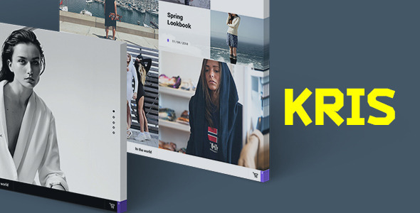 ThemeForest Kris PSD Template 8645395