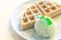 home made waffle with Green tea ice cream - PhotoDune Item for Sale