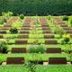 Cemetery in Kanchanaburi Thailand - PhotoDune Item for Sale