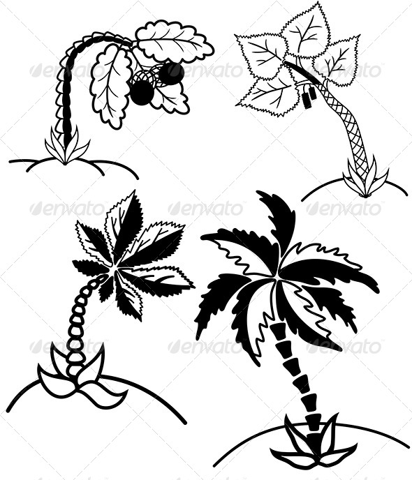 GraphicRiver Palm Trees Collection 8645416