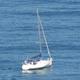 Sailing Boat at Ocean 829 - VideoHive Item for Sale