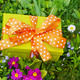 present lawn - PhotoDune Item for Sale