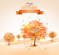 Autumn background with colorful leaves and trees. - PhotoDune Item for Sale