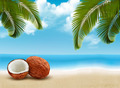Coconut with palm leaves. Summer vacation background. - PhotoDune Item for Sale