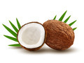 Coconut with leaves. - PhotoDune Item for Sale