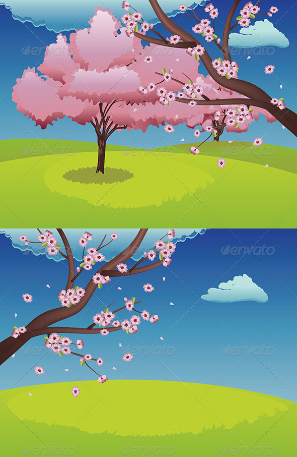 GraphicRiver Sakura on Grass Field 8661313