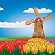 Windmill and Tulips - GraphicRiver Item for Sale