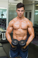 Portrait of a shirtless muscular man flexing muscles with dumbbells in gym