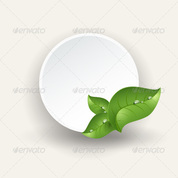 GraphicRiver Round Banner Green Leaves Drops of Dew 8664715