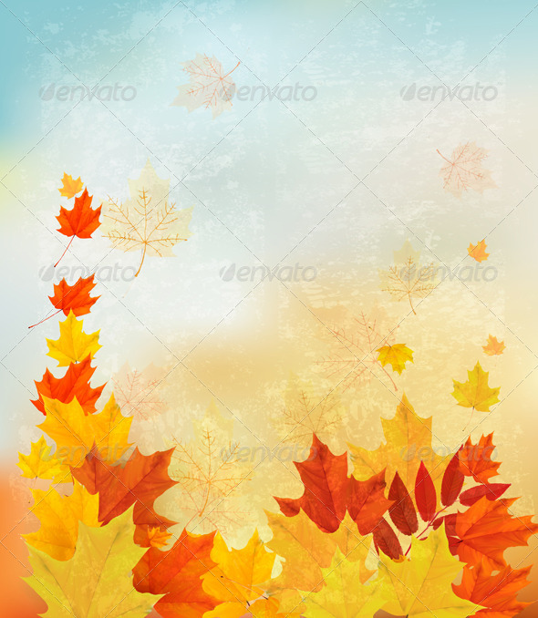 GraphicRiver Autumn Background with Colorful Leaves 8676985
