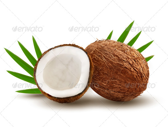 GraphicRiver Coconut with Palm Leaves 8677013