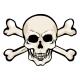 Vector Cartoon Pirate Skull with Cross Bones - GraphicRiver Item for Sale