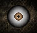 monster eyeball - PhotoDune Item for Sale
