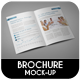 Brochure / Catalog / Magazine Mock-Up - GraphicRiver Item for Sale