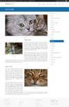 Ether-content-builder-nivo-slider-widget-front.__thumbnail