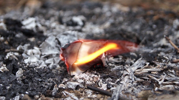 Folded Notebook Paper Burning to Ashes