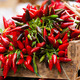 bunch of red hot chili pepper at market - PhotoDune Item for Sale
