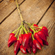 Bunch of red hot pepper - PhotoDune Item for Sale