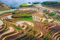 Chinese Rice Terraces - PhotoDune Item for Sale