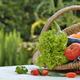 vegetables basket on a garden table  - PhotoDune Item for Sale