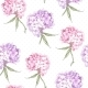 Beautiful Pink Hydrangea Seamless Background - GraphicRiver Item for Sale