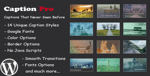 CodeCanyon Caption Pro Image Caption Wordpress Plugin 8675962