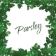 Parsley Frame - GraphicRiver Item for Sale