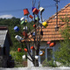 Bucket Tree - PhotoDune Item for Sale