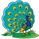Peacock Cartoon - GraphicRiver Item for Sale