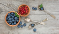 Still life with blueberry and red currants - PhotoDune Item for Sale