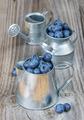 Blueberries in a metal tableware - PhotoDune Item for Sale