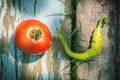 Vegetables, tomatoes and peppers in nature - PhotoDune Item for Sale