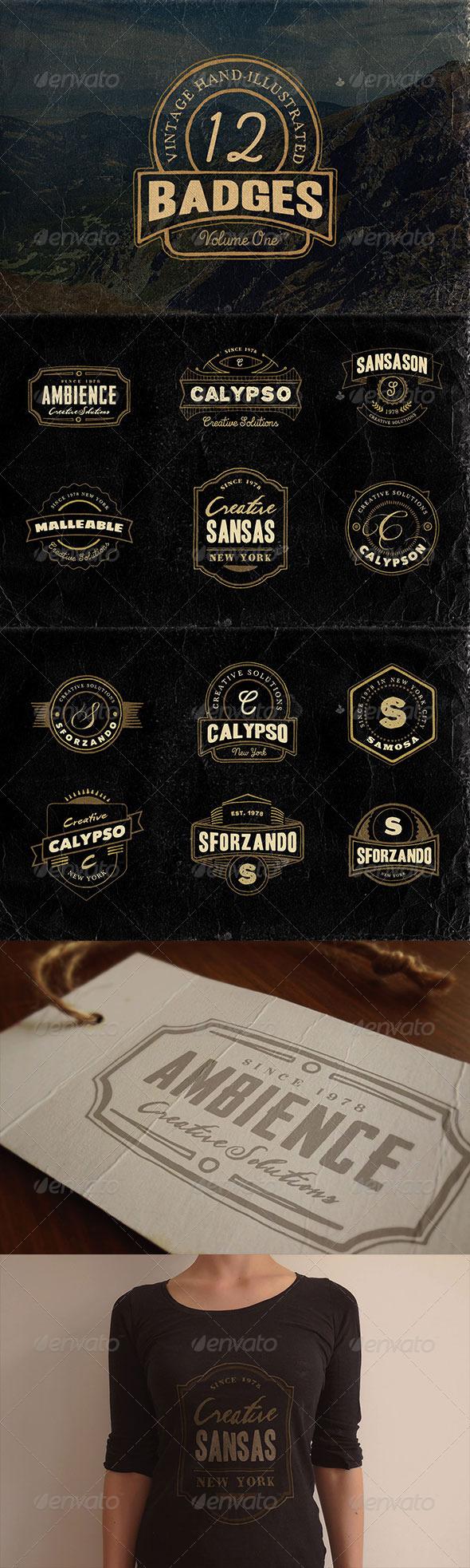 GraphicRiver 12 Hand Drawn Vintage Badges v.1 8719587