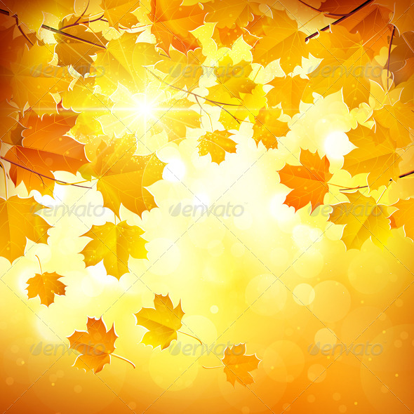 GraphicRiver Autumn Leaves 8721759