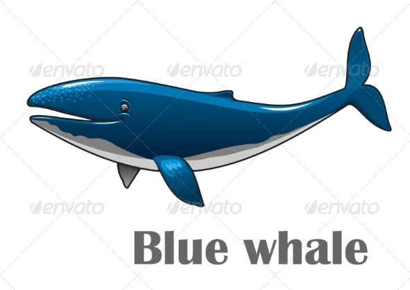GraphicRiver Cartoon Blue Whale 8724680