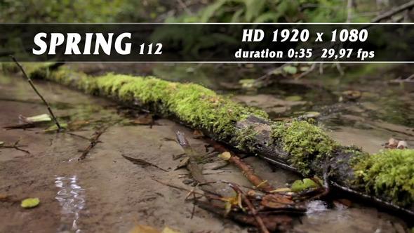 Spring 112