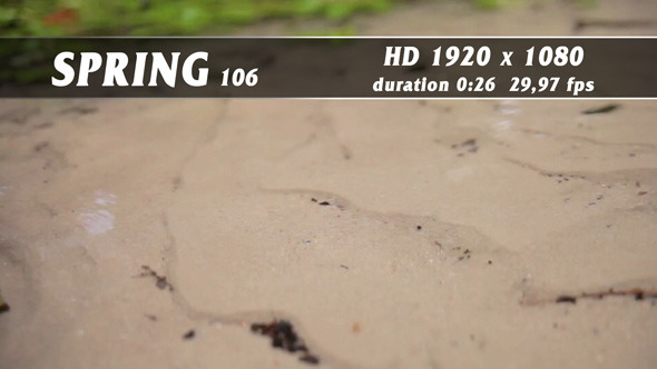 Spring 106