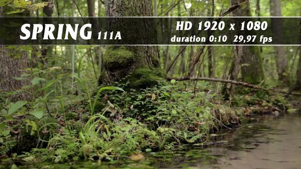 Spring 111A