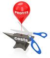 cut costs - PhotoDune Item for Sale