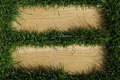 Beautiful green grass texture with empty space for text. - PhotoDune Item for Sale