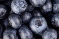 Macro closeup view group fresh blueberries background - PhotoDune Item for Sale