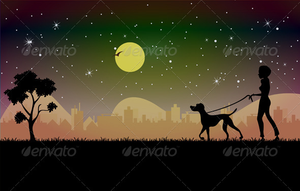 GraphicRiver Woman Walking Dog at Night 8731503