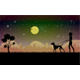 Woman Walking Dog at Night - GraphicRiver Item for Sale