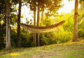Hammock - PhotoDune Item for Sale