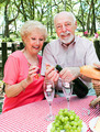 Picnic for Senior Couple - PhotoDune Item for Sale