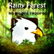 Rainy Forest - VideoHive Item for Sale