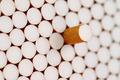 filter cigarettes - PhotoDune Item for Sale