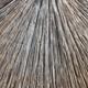 Bamboo Background - PhotoDune Item for Sale