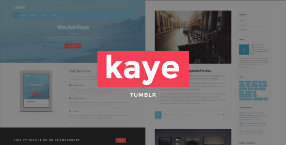 Kaye - Business Tumblr Blog